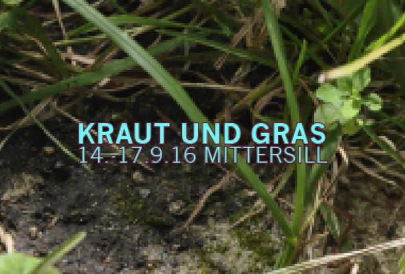 KOFOMI #20: KRAUT UND GRAS